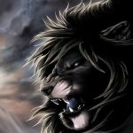 syldri Profile Picture